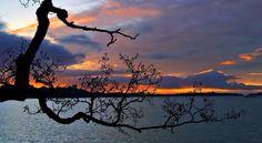 Sunset  Helsinki Finland photo by Laku Lance