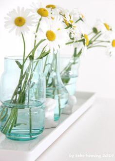 Die Margheriten... #flowers