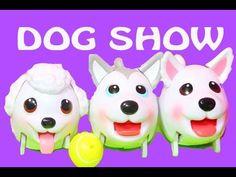Must see Chubbie Chubby Adorable Dog - d2043a04b833250c59291790486f3562--husky-pomeranian-chubby-puppies  Graphic_92237  .jpg