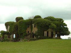 Lisheen House, Sligo, Ireland