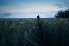 Path by Mikko Lagerstedt on 500px