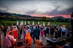 Sunset | Napa Valley Wedding | Wedding Photography at Brix Restaurant and Gardens | Vineyard Wedding | Christophe Genty Photography