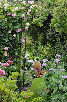 Detente Jardin - don't the colours of this rose garden make you fall in love? ( pink rose + lilac poppy + splashes of white)