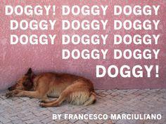 DOGGY!