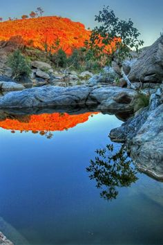Waterhole near Alice Springs, Northern Territory, Australia Outback Australia, Visit Australia, Australia Travel, All Nature, Amazing Nature, Places To Travel, Places To See, Beautiful World, Beautiful Places