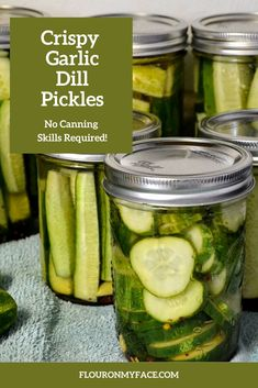 Crispy Dill Pickle Recipe, Garlic Dill Pickles, Canning Dill Pickles, Pickled Garlic, Easy Pickle Recipe, Homemade Refrigerator Pickles, Kosher Pickles, Homemade Pickles, Homemade Dog