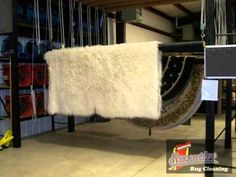 Executive Rug Cleaning Oklahoma