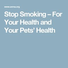 Stop Smoking – For Your Health and Your Pets' Health