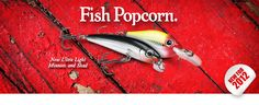 Rapala always seems to have the funniest catchphrases! Big Fish, World Records, Fishing Lures, Funny Photos, Country, Products, Art, Fishing Jig, Fanny Pics