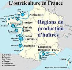 L es Huîtres en France L'huître plate est élevée sur les côtes atlantiques (Bretagne) et méditerranéennes. L'huître creuse est élevée à Arcachon, à Marennes-Oléron, en Bretagne, dans l'île de Ré et l'île de Noirmoutier et à Bouin situé au cœur du Marais...