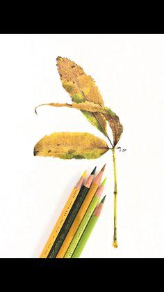 Pencil Drawing Tutorials, Art Tutorials, Pencil Drawings, Colored Pencil Tutorial, Colored Pencil Techniques, Color Pencil Sketch, Drawing Challenge, Pencil Illustration, Drawing Techniques