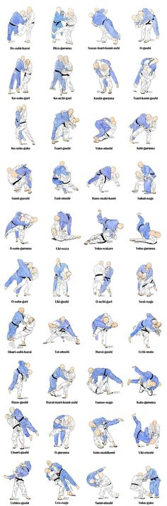: Photos/pics of Major Judo throws ...