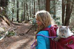 Weekends were made for exploring #adventurecats
