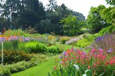The Galloping Gardener: Summer flower and steam spectacular at Bressingham Gardens - a great day out for all the family