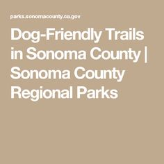 Dog-Friendly Trails in Sonoma County | Sonoma County Regional Parks
