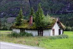Grass Roof in Norway
