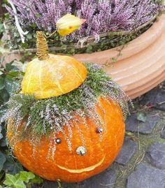 Halloween pumpkin with hair of the calluna flowers Fete Halloween, Cute Halloween Costumes, Holidays Halloween, Scary Halloween, Halloween Pumpkins, Halloween Crafts, Halloween Decorations, Autumn Decorating, Fall Decor