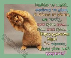 . Funny Greek, Greek Quotes, Picture Quotes, Jokes, Pictures, Photos, Animals, Funny Things, Relax