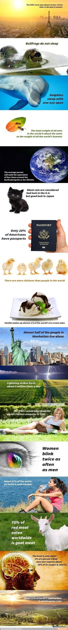 these are really cool facts about the world i love learning new ones:)