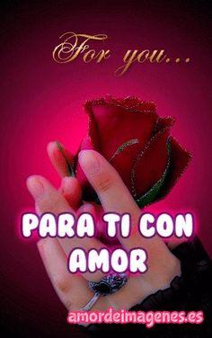 Imágenes de Rosas con Movimiento, este post trae hermosísimas imágenes en movimiento de rosas con textos de amor para que se lo dediques a tu pareja.