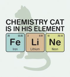 Science humor - Chemistry cat is in his element - Fe Li Ne (Iron, Lithium, Neon). Design available on posters, t-shirts, bags and more.