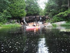 Gun Lake 2013.... Algonquin Highlands Water Trails. Portage off St Noras Lake