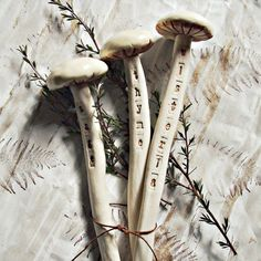 Mushroom plant markers