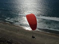 Torrey Pines Gliderport/Blacks Beach Torrey Pines, Paragliding, Old City, Outdoor Fun, San Diego, Cities, California, Beach, Places