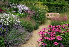 Plants for a cottage garden border
