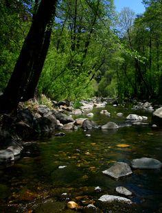 oak-creek-canyon-scene-1.jpg (800×1053)