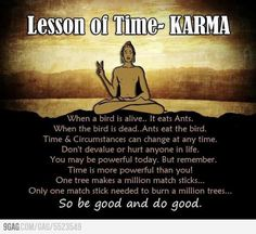 Karma, gotta love it.... these thoughts are just fascinating!!  Bird eats the ants... the ants then eventually eat the Bird....