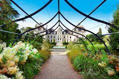 Discover the chateau de Cheverny