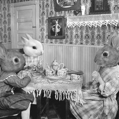Bunny Tea Party - Photographic Art Print. By Grand Ole Bestiary