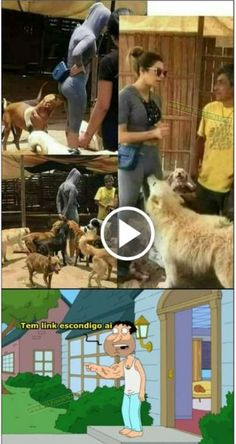 Tech Discover 32 Photos That Will Make You Think How on Earth Could This Even Happen? Funny Dog Memes Funny Dogs Funny Images Funny Photos Whatsapp Group Funny Link Meme Funny Doodles Dark Jokes Little Memes Funny Adult Memes, Adult Humor, Funny Dogs, Lol Memes, Funny Photos, Funny Images, Whatsapp Group Funny, Funny Links, Link Meme