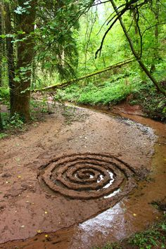 Land Art - www.de, Land Art - www. Land Art, Landscape Art, Landscape Design, Japanese Cherry Tree, Japanese Garden Design, Japanese Gardens, Forest Art, Environmental Art, Nature Crafts