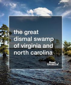 The Great Dismal Swamp of Virginia and North Carolina