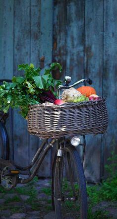 cowparsley.blogspot.com