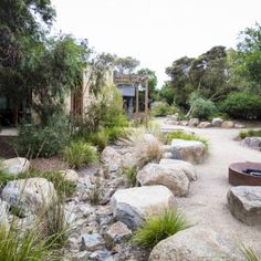 If you live in a dry and arid climate then your desert landscaping is going to take a little more planning than some other parts of the country. desert landscaping will have to work with a plan that includes only plants and trees that Australian Garden Design, Australian Native Garden, Rain Garden Design, Garden Landscape Design, Landscape Rocks, Bush Garden, Dry Garden, Coastal Gardens, Sloped Garden