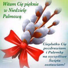Catholic, Sunday, Inspirational, Holidays, Disney, Palmas, Easter Activities, Pictures, Domingo