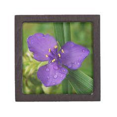 Purple Virginia Spiderwort Flower Premium Jewelry Box  $19.95