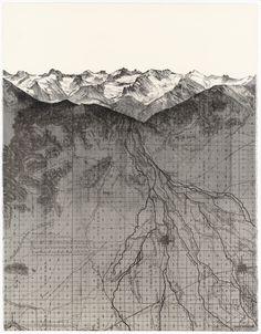 site map as ground details, soil, roots, contours