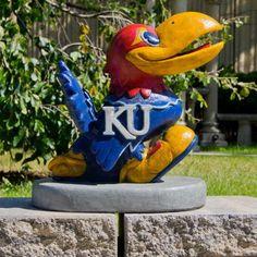 This Kansas Jayhawks