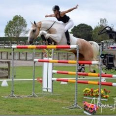 6 feet jumps, bareback and bridleless. wow! that takes balance! look mom no hands.