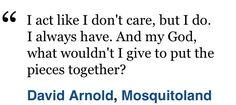 Mosquitoland quote
