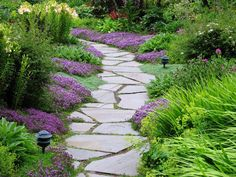 Garden Path w/ random stone. I love the purple and green together.