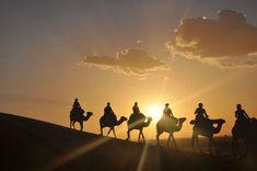Camel trekking in desert of Morocco