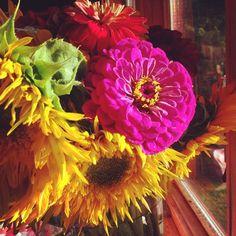Beautiful flowers include: Flowers-10 varieties of sunflowers, zinnias, nasturtiums, marigolds, borage, purple coneflowers, lavender, sweet peas, and black eyed susan's,