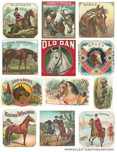 """Here is a free vintage collage sheet featuring cigar labels with a horse or equestrian theme. The sheet is printable at 8.5"""" x 11"""" and is in .jpg format. Enjoy!"""