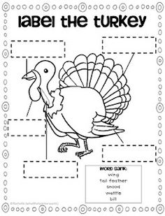 What the Teacher Wants!: TURKEY downloads and something extra