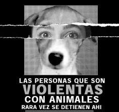 Crueldad con los animales: ¿por qué se da y cómo evitarla? | Ecosofía